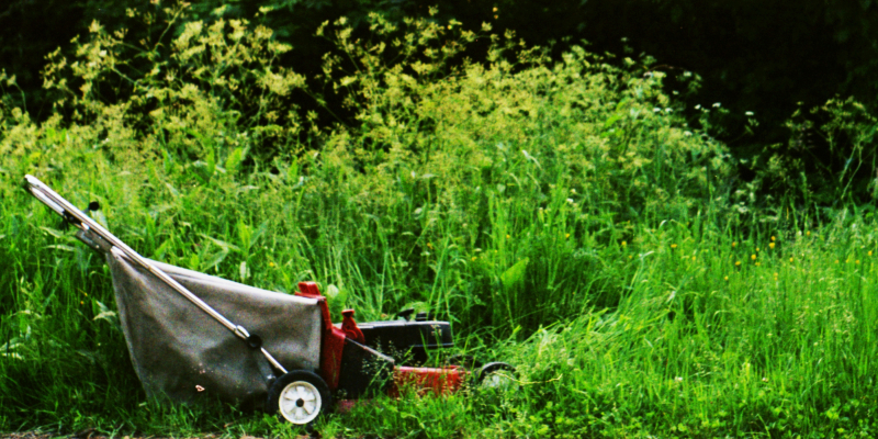 Lawnmower by Mike Babierz mikebabz 4778838664 EDIT