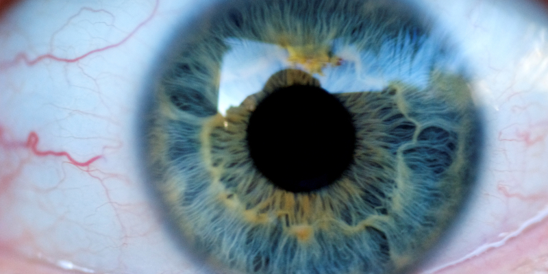 Eye by Joel Penner featheredtar 3074700863 EDIT