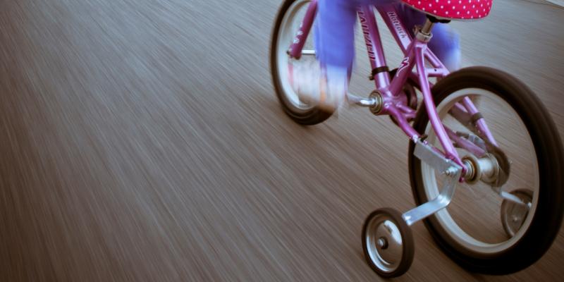 Training Wheels by R Nial Bradshaw zionfiction 16173858067 EDIT