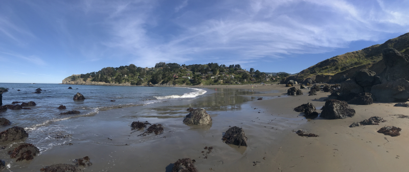 Muir-Beach-June-8-2