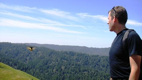 Barnabe Peak, Samuel P. Taylor State Park, Marin County