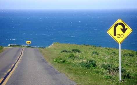 Road to Tomales Point