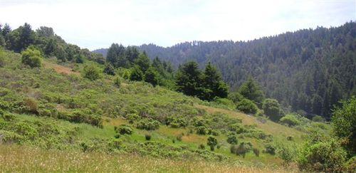 Barnabe Peak 27