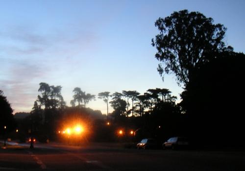 Panhandle at Dawn